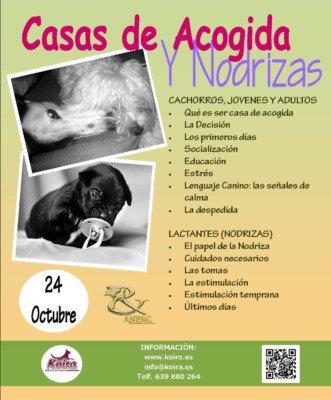 """Imagen 2 Seminarios """"Yes&Click"""""""