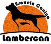 Escuela Canina Lambercan Granada