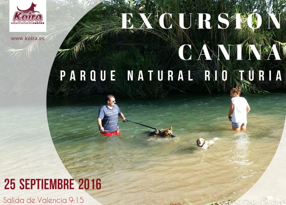 Domingo Perruno: Salida a Villamarxant Parque Natural del Rio Turia