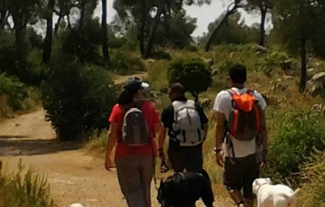 Nos vamos de Excursión: Salida a Villamarxant Parque Natural del Rio Turia