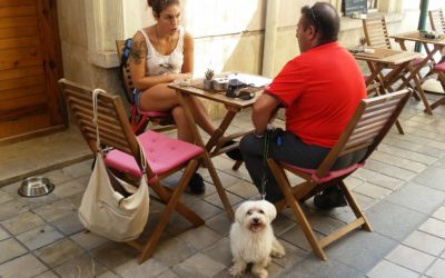 De tapas con mi perro, los locales petfriendly
