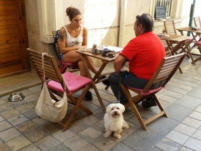 de tapas con mi perro, locales petfriendly