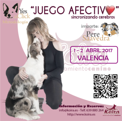 """Cartel del Seminario """"JUEGO AFECTIVO: Sincronizando Cerebros"""" impartido por Pere Saavedra en Valencia. Imprescindible para propietarios de perros y adiestradores caninos."""