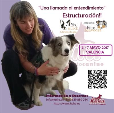 """Seminario """"Una Llamada al Entendimiento"""" Estructuración!! impartido por Pere Saavedra Metodología Yes&Click en Valencia 2017 organiza KOIRA Adiestramiento Canino"""