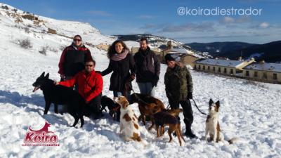 Foto grupo salida a la nieve con los perros 29-enero-2017