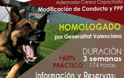 Curso Homologado por la Generalitat Valenciana de Adiestrador Canino Profesional Capacitado Especializado en Modificación de Conducta y PPP