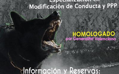 Curso de Adiestrador Profesional Homologado por Generalitat Valenciana