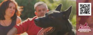 Portada koira adiestramiento canino con pastor aleman negro y logo