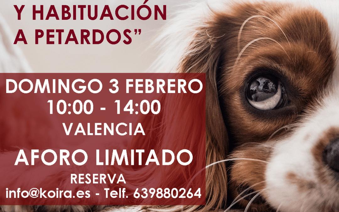 Taller práctico: Reducción de Estrés y Habituación a petardos en perros