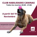 CURSO DE HABILIDADES CANINAS Y DOG DANCING