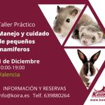 Taller práctico: Manejo y cuidado de pequeños mamíferos
