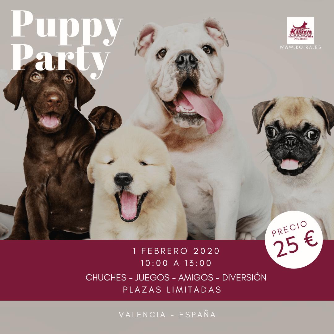 20200201 Puppy Party Cachorros 1080x1080
