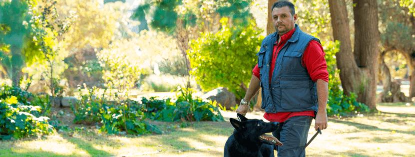 pedro adiestrador de perros en valencia