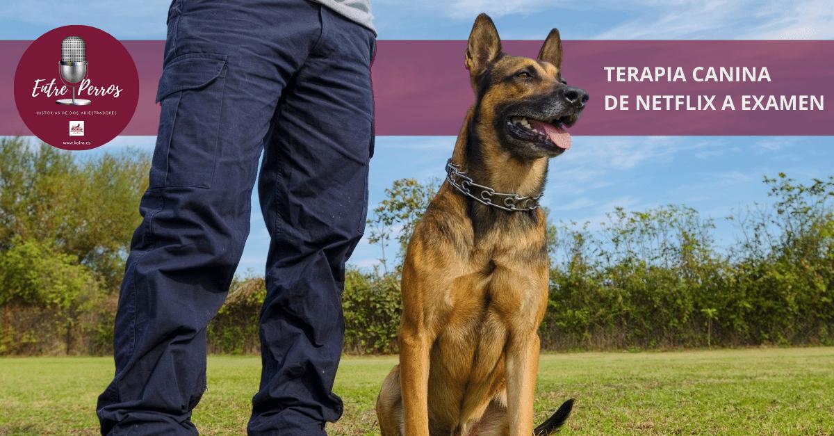 20210328 Terapia Canina de Netflix a Examen