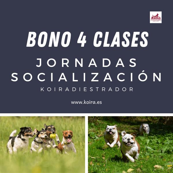 Bono 4 entradas socializacion