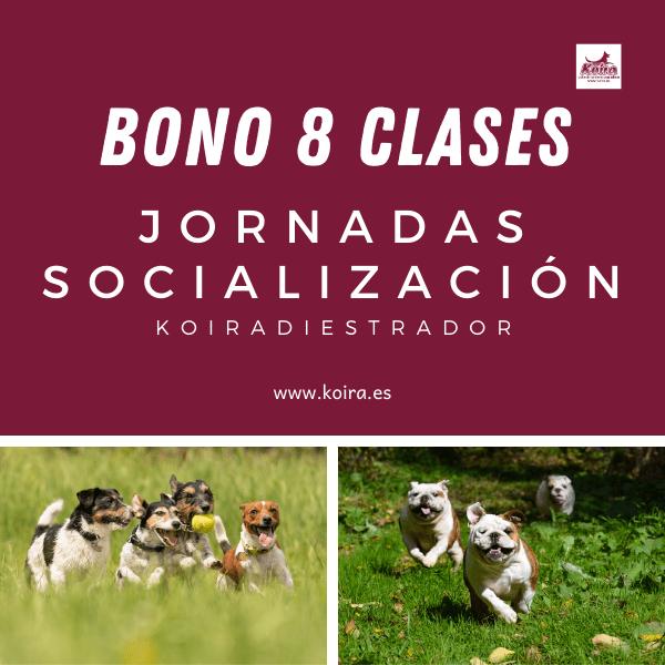 Bono 8 entradas socializacion